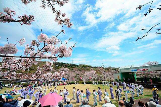 摂津峡お花見2